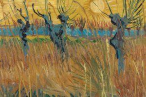 Van-Gogh-tra-grano-e-cielo-Vicenza-opere-visita-guidata-Plan-D-4