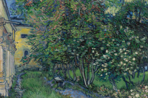 Van-Gogh-tra-grano-e-cielo-Vicenza-opere-visita-guidata-Plan-D-5